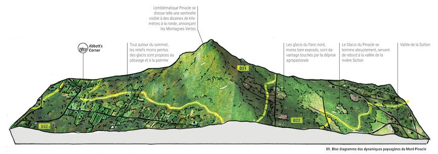 Bloc-diagramme des dynamiques paysagères du mont Pinacle, dans la MRC Brome-Missisquoi. Image : Louis-Philippe Rousselle-Brosseau, Les Mille Lieux